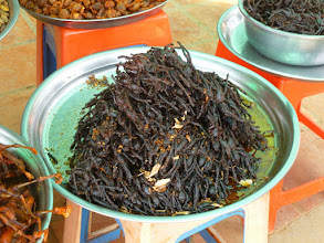 Photo: Another option was fried tarantulas!  I was offered all of these, but I didn't try any.