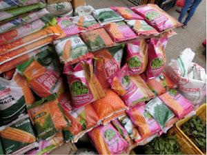 トウモロコシのハイブリッド種。インドからの輸入が多い。