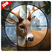 Chasse au cerfs 2017 - Cerf Chasse Jeu