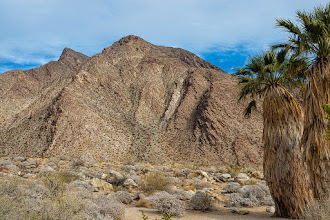 Photo: Beginning of Borrego Palm Canyon trail, Anza Borrego SP
