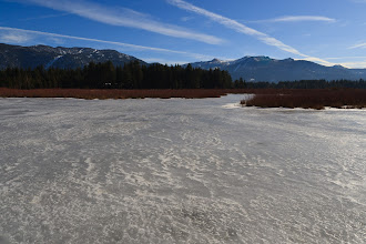 Photo: Upper Truckee River Marsh, South Lake Tahoe