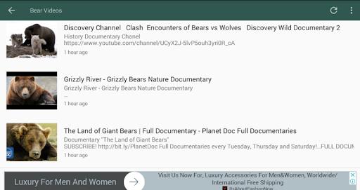 Bear Videos screenshot 2
