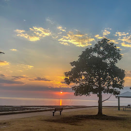 Sunrise over the Bay by Taz Graham - Novices Only Landscapes ( clouds, ocean, sunrise, landscape )