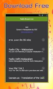 Radio Brunei Live - náhled