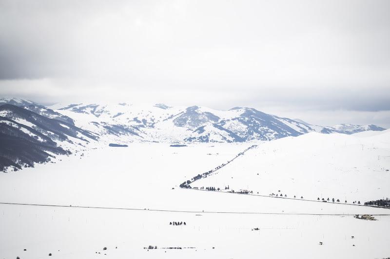 Soffice, candida neve bianca di Didi - Diana Gabrielli