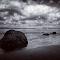 IMG_20150422_103645.jpg