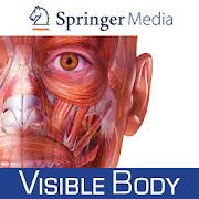 Download Human Anatomy Atlas 2019: Complete 3D Human Body APK