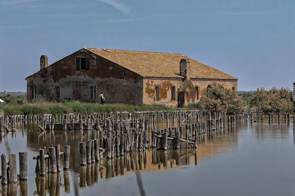 Riflessi in laguna di PaolaTizi