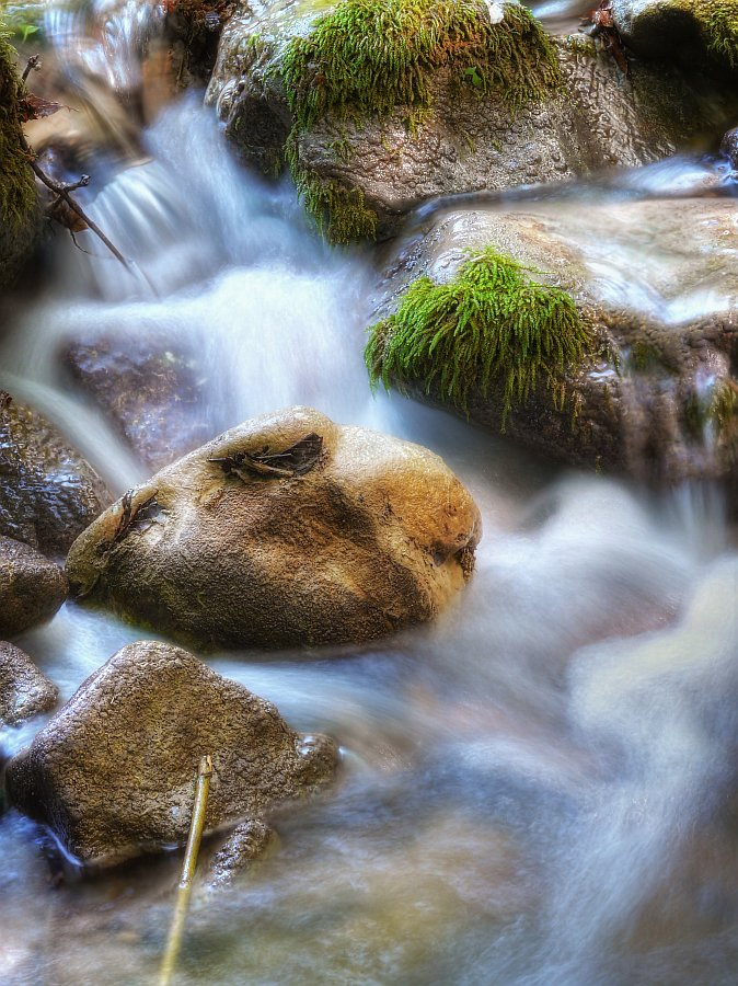 Stream Of Life by Roman Solar - Landscapes Waterscapes