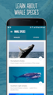 Wild About Whales- screenshot thumbnail