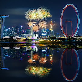 SG50 Celebration by Sam Song - Abstract Fire & Fireworks ( flyer, mbs, fireworks, singapore )