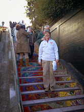 Photo: Liz McLoughlin, one of the three Hidden Garden Steps organizing committee co-chairs, standing near the top of the Steps (16th Avenue, between Kirkham and Lawton streets in San Francisco's Inner Sunset District) during the opening celebration (Saturday, December 7, 2013)  For more information about the Steps, please visit our website (http://hiddengardensteps.org), view links about the project from our Scoopit! site (http://www.scoop.it/t/hidden-garden-steps), or follow our social media presence on Twitter (https://twitter.com/GardenSteps), Facebook (https://www.facebook.com/pages/Hidden-Garden-Steps/288064457924739) and many others.
