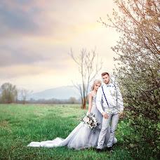 Wedding photographer Elena Romanec (Romanec). Photo of 19.04.2017