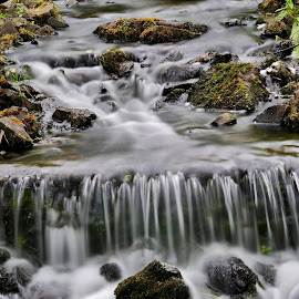 Flow of time by Mike Baggott - Uncategorized All Uncategorized ( moss, rocks, royal botanical gardens edinburgh, waterfall, water )