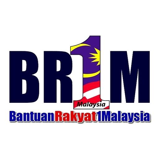 BR1M-17 Semakan Dan KemasKini