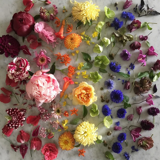 Bows & Arrows | 10 Florists to Follow on Intagram | Bridal Musings Wedding Blog