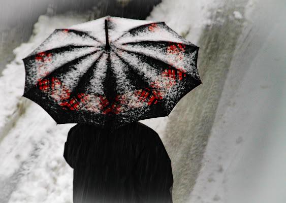 Sotto l'ombrello con la neve e' piu' bello       di Ro51