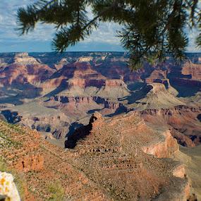 Battleship Rock, Grand Canyon, AZ by Jeff Yarbrough - Landscapes Mountains & Hills