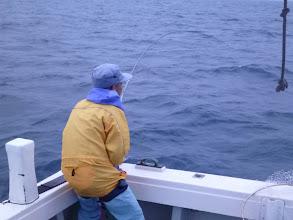 "Photo: 日中の釣りもだいぶん暑くなってきました。そろそろ夜釣りへシフトかな? まずは""クマガイさん"""