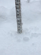 Photo: The snow stake reads 5 inches of fresh snow from the storm that hit the morning of Saturday, November 5th, 2016!