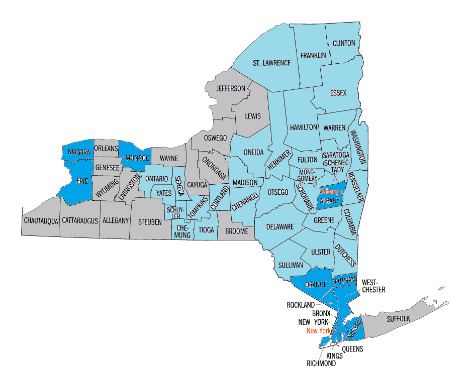 New York Map election.png