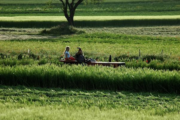 agricoltori con il sorriso di FLAVIO DI PERSIO