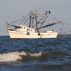 shrimp boat 383.JPG