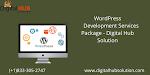 WordPress Development Services Package - Digital Hub Solution