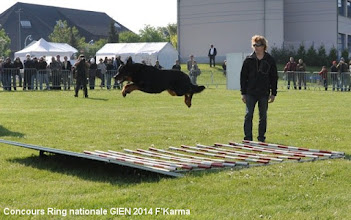 Photo: Concours Ring nationale GIEN 2014 F'Karma