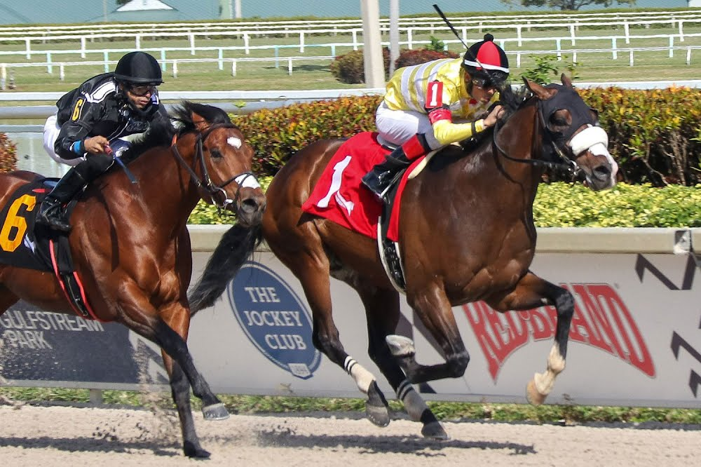Photo: Gulfstream Park - Sebastián Bravo L.