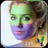 Christmas Island Flag Face Paint-Pic Photo Editor APK