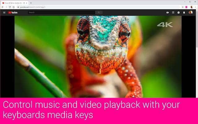 Keyata Media Keys