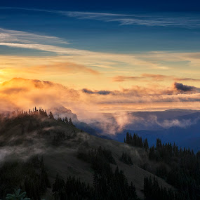 Morning on High Ridge Trail by Jim O'Neill - Landscapes Sunsets & Sunrises ( washington state, olympic national park, port angeles, sunrise, wa, landscapes )