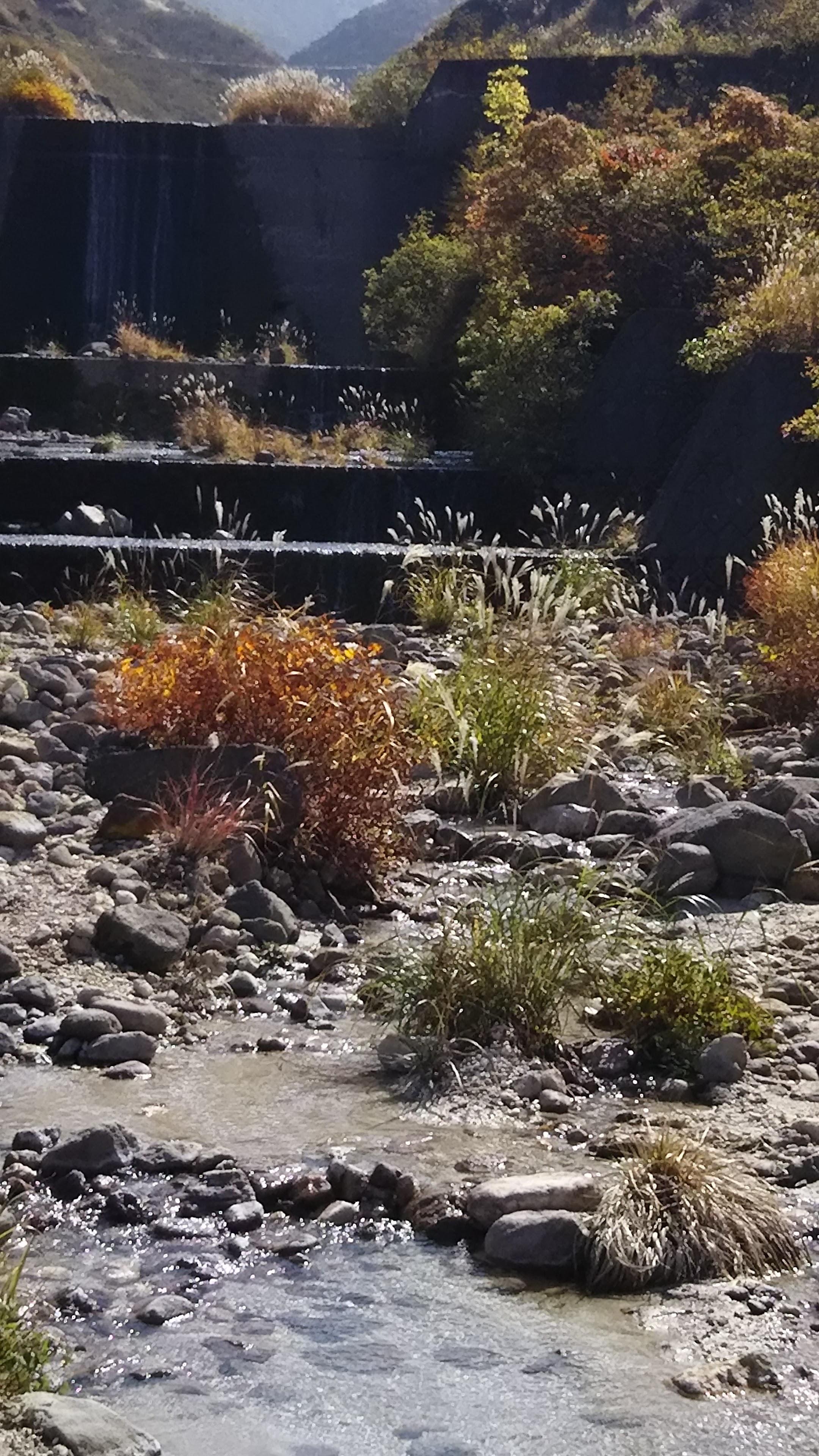 砂防ダムを通過