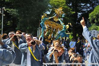 Photo: 【平成21年(2009) 本宮】  亀ヶ池八幡宮に到着。境内で神輿もみ。