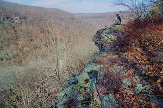 Photo: Pat on bluff above Whitaker Creek