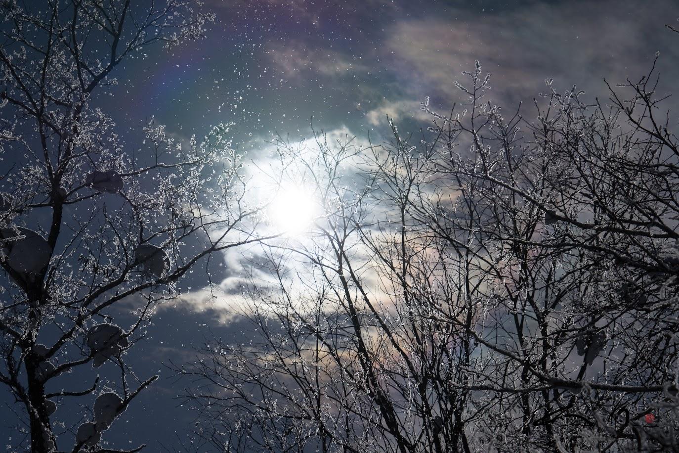光と影、表裏一体の世界