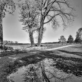 Banks of the Wabash by Tim Hall - Black & White Landscapes