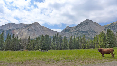 Photo: The trailhead is about 25 miles north of Bozeman near Fairy Lake. Six of those miles are VERY rough gravel. We hiked up to the pass in the center of the photo, then up to Naya Nuki, and finally up to Sacajawea. Hardscrabble is to the right of the pass.