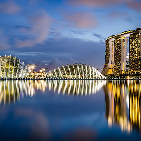 Tanjong Rhu by Calvin Lin - Buildings & Architecture Public & Historical ( water, building, blue hour, landscape, singapore )