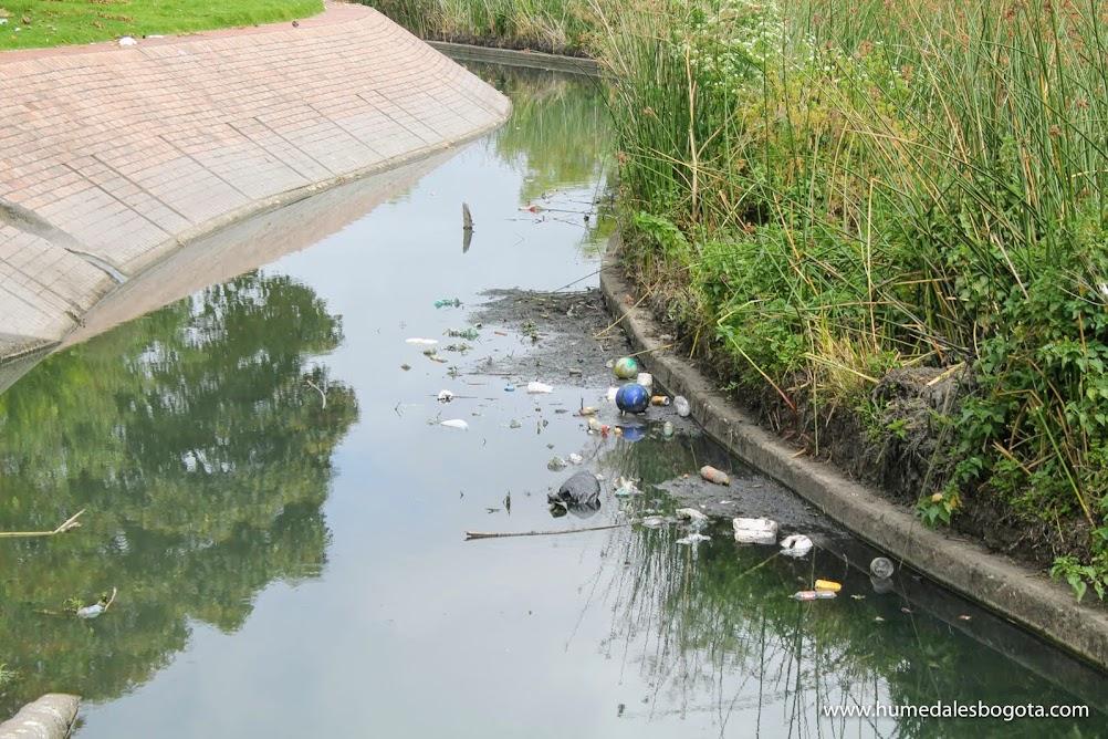 Residuos por los canales perimetrales, humedal Jaboque