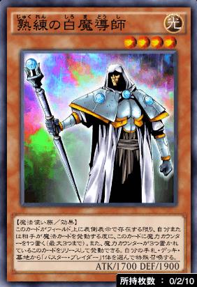 熟練の白魔導師