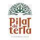 Download Pilar da Terra For PC Windows and Mac