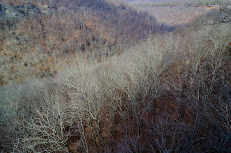Photo: Whitaker Creek Valley, bluff line of the crag in far distance