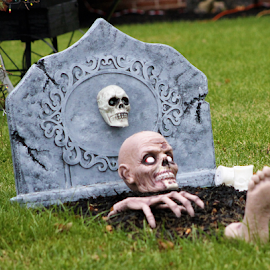 Leaving the Grave by Leah Zisserson - Public Holidays Halloween ( skeleton, halloween, rising, grave, bones, display, virginia,  )