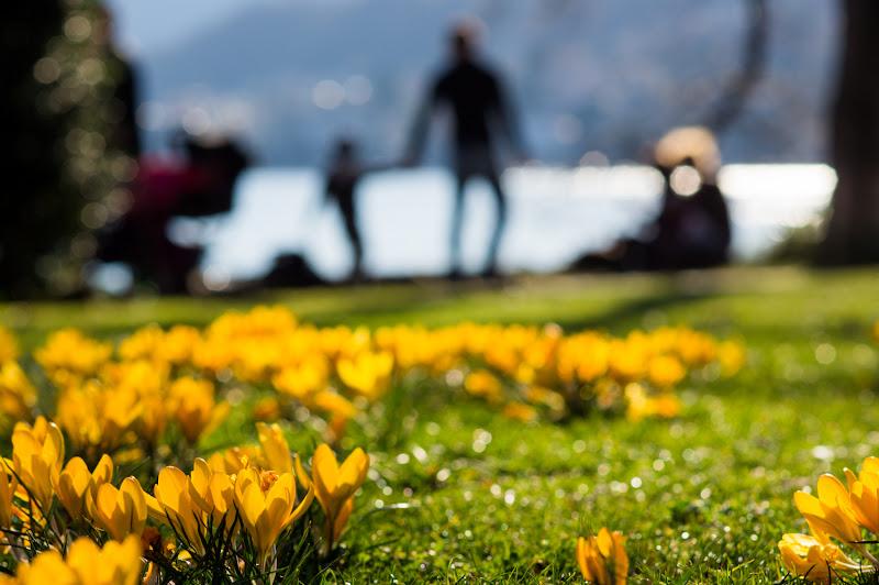 E' primavera e si va a spasso! di mariateresatoledo