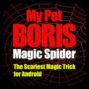 Magic Spider  Icon
