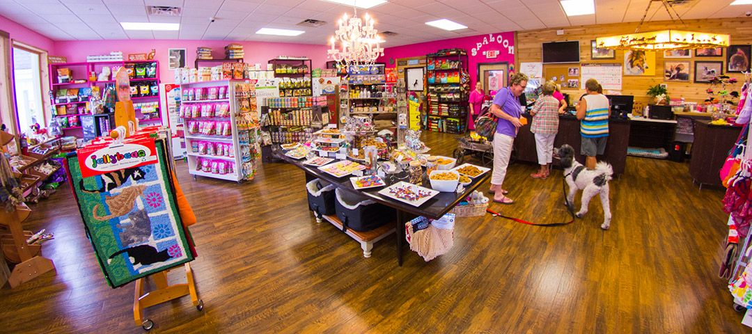Natural Dog Food Stores San Antonio