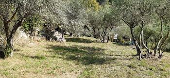 terrain à batir à Cotignac (83)