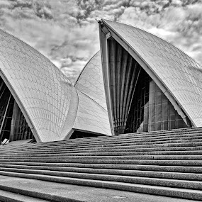 soh by Glen John Terry  - Buildings & Architecture Architectural Detail ( opera house, sydney,  )